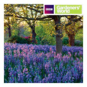 Gardeners' World - Meadow of Camassia Greeting Card
