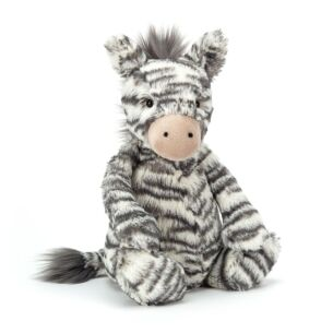 Medium Bashful Zebra