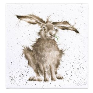 'Hare-Brained' Large Canvas