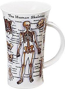 Human Skeleton Glencoe shape Mug