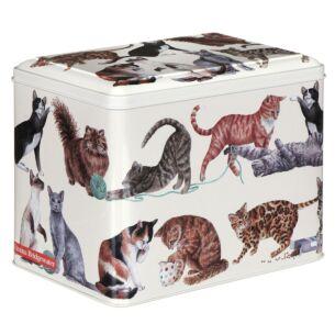 Rectangular Cat Treat Tin