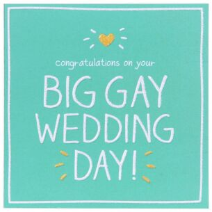 Big Gay Wedding Day