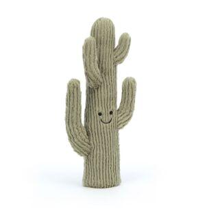 Small Amuseable Desert Cactus