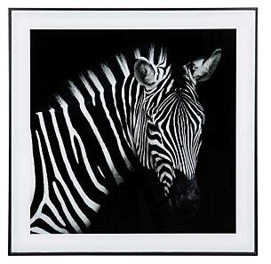Large Monochrome Zebra Print with Black Frame