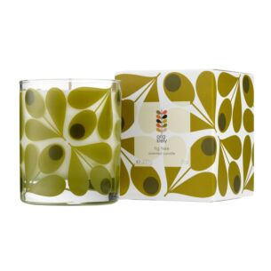 Fig Tree Boxed Scented Candle