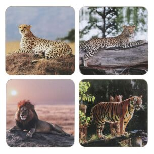 Safari Big Cats Set of 4 Coasters