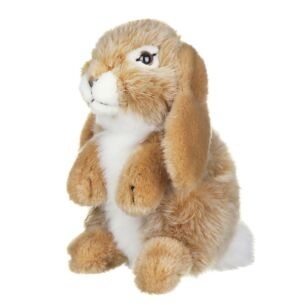 Brown Sitting Lop Eared Rabbit