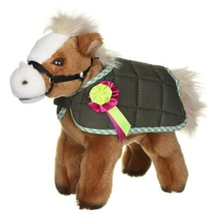Horse with Jacket