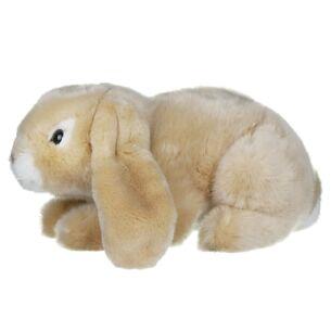 Cream Lop Eared Rabbit