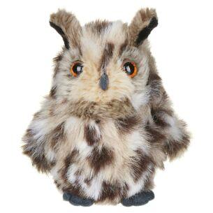 Small European Eagle Owl