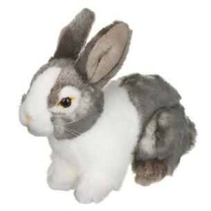 Grey & White Pet Rabbit