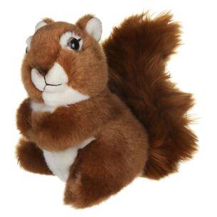 Medium Squirrel