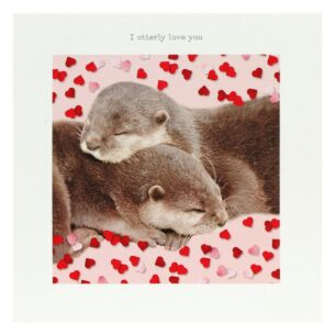 'I Otterly Love You' Valentine's Day Card
