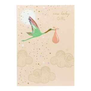 Sara Miller Baby Girl Stork Card