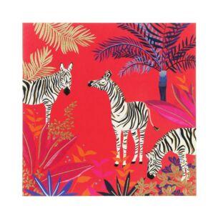 Sara Miller Zebras Card