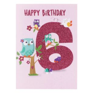 Owls 6th Birthday Card