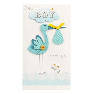Second Nature 'Baby Boy' Card