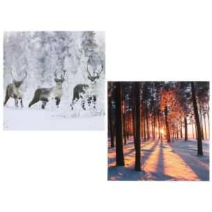 Winter Wonderland 'Reindeer / Sunset' Box of 8 Christmas Cards