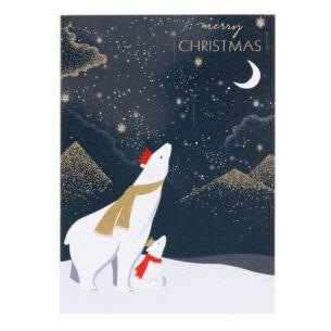 Polar Bears & Moon Christmas Card