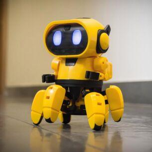 Tobbie the Interactive Robot