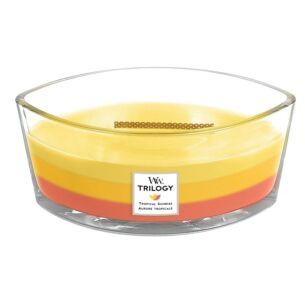 Tropical Sunrise Hearthwick Ellipse Trilogy Candle