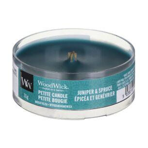Juniper & Spruce Petite Candle