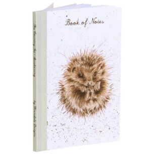 Awakening Hedgehog A6 Notebook