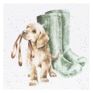 'Hopeful' Dog Card