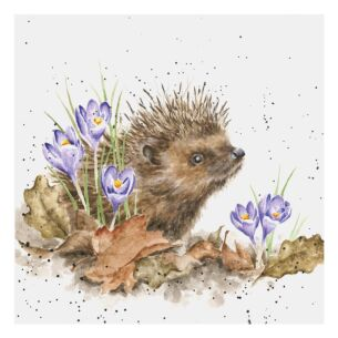 'New Beginnings' Hedgehog Card