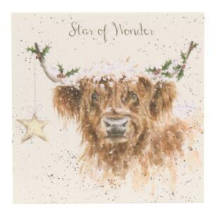 'Highland Star' Cow Christmas Card