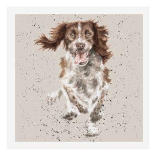 A Dog's Life Springer Spaniel Card