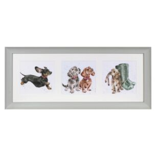 'A Trio Of Dogs' Triple Print with Sage Frame