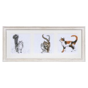 'A Trio Of Cats' Triple Print with Cream Frame