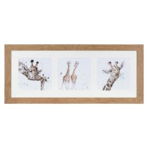 'A Trio of Giraffes' Triple Print with Oak Frame