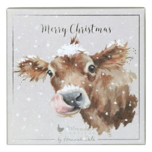 'First Taste Of Snow' Set of 8 Luxury Boxed Christmas Cards