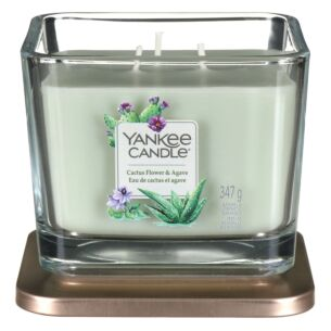 Cactus Flower & Agave Medium Elevation Candle
