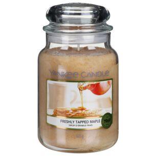 Freshly Tapped Maple Large Jar Candle