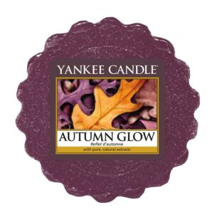 Autumn Glow Wax Melt
