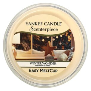 Winter Wonder Scenterpiece Melt Cup