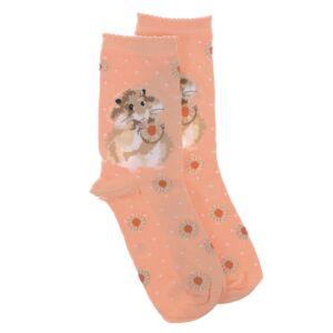 'Diet Starts Tomorrow' Hamster Socks