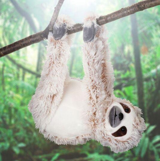 Brown Hanging Sloth