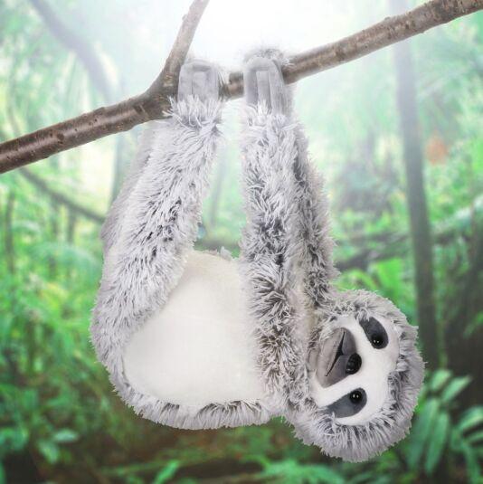 Grey Hanging Sloth