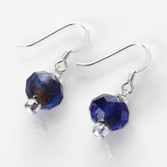 Blue Winter Radiance Earrings
