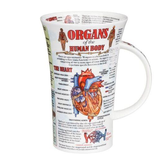 Dunoon Organs Of The Human Body Glencoe Shape Mug Temptation Gifts