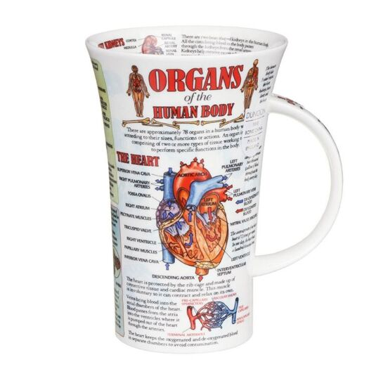 Organs of the Human Body Glencoe Shape Mug