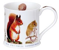Country Wildlife Squirrel Wessex shape Mug