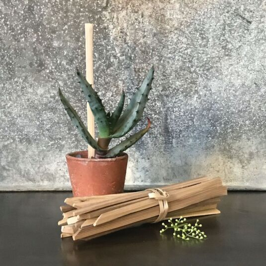 Bundle of 20 Plant Sticks