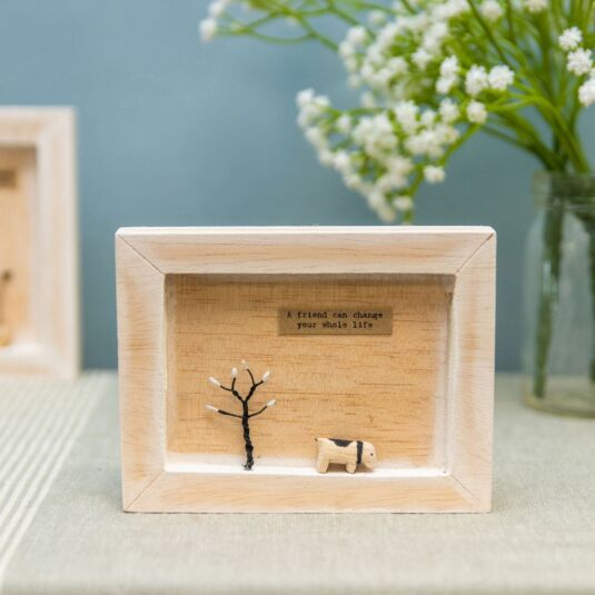 'A Friend Can' Box Frame