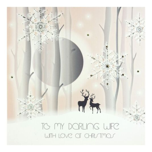 'To My Darling Wife' Winter Wonderland Christmas Card