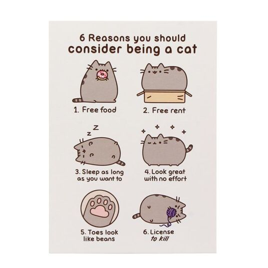 6 Reasons To Be A Cat Card